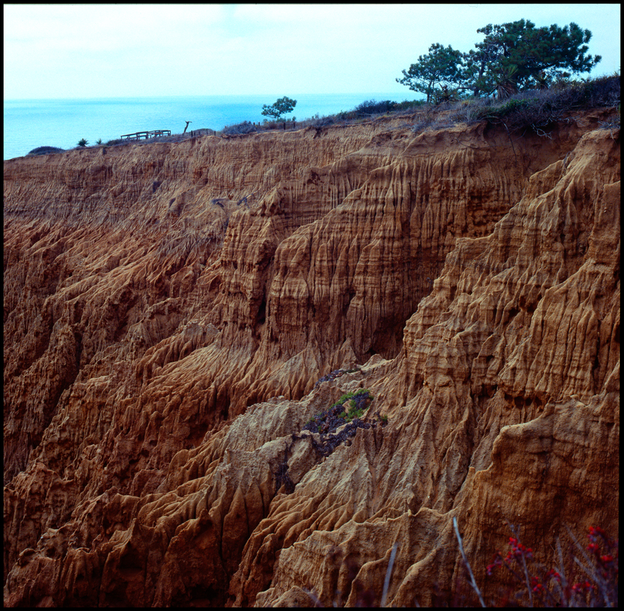 Torrey Pines Badlands